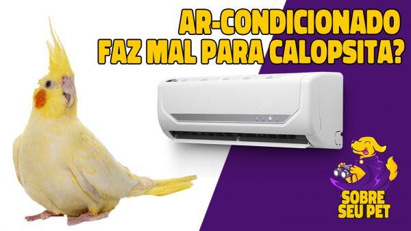 ar-condicionado faz mal para calopsita