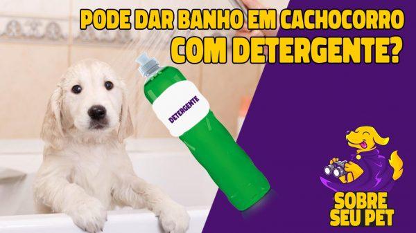 cachorro pode tomar banho com detergente